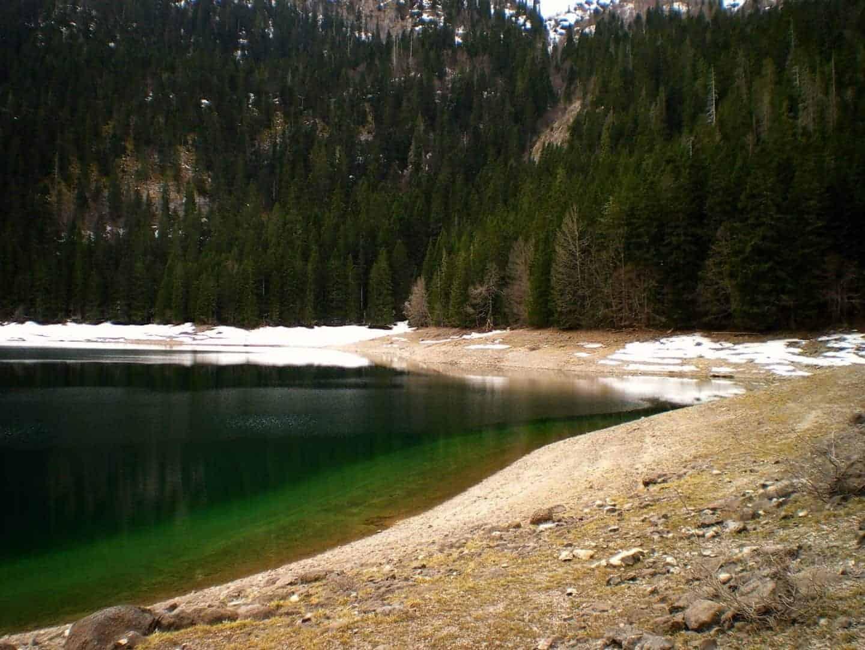 crno jezero black lake montenegro woods
