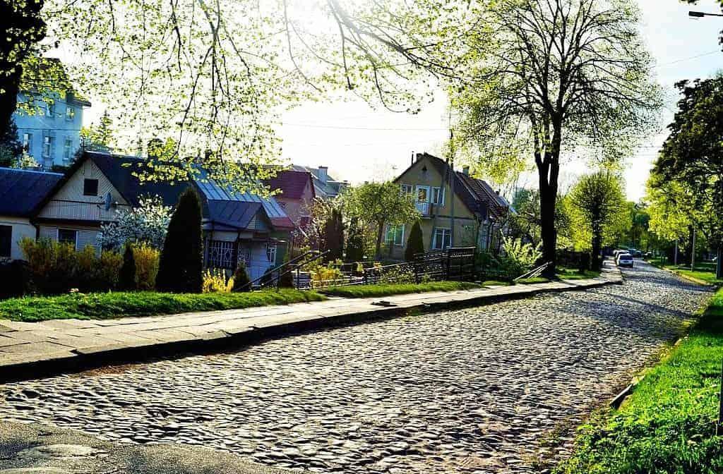 Rasos Vilnius