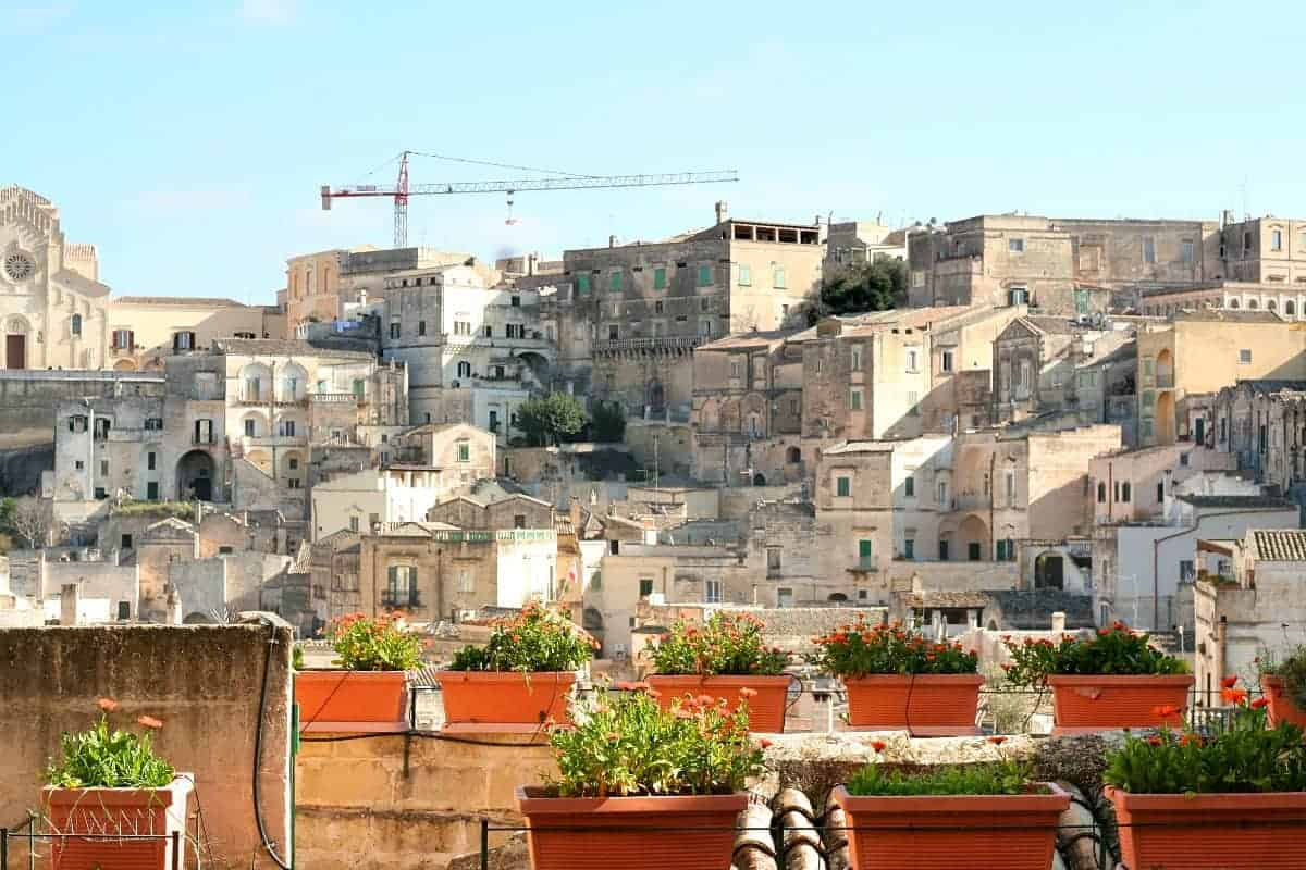 flowers in Matera
