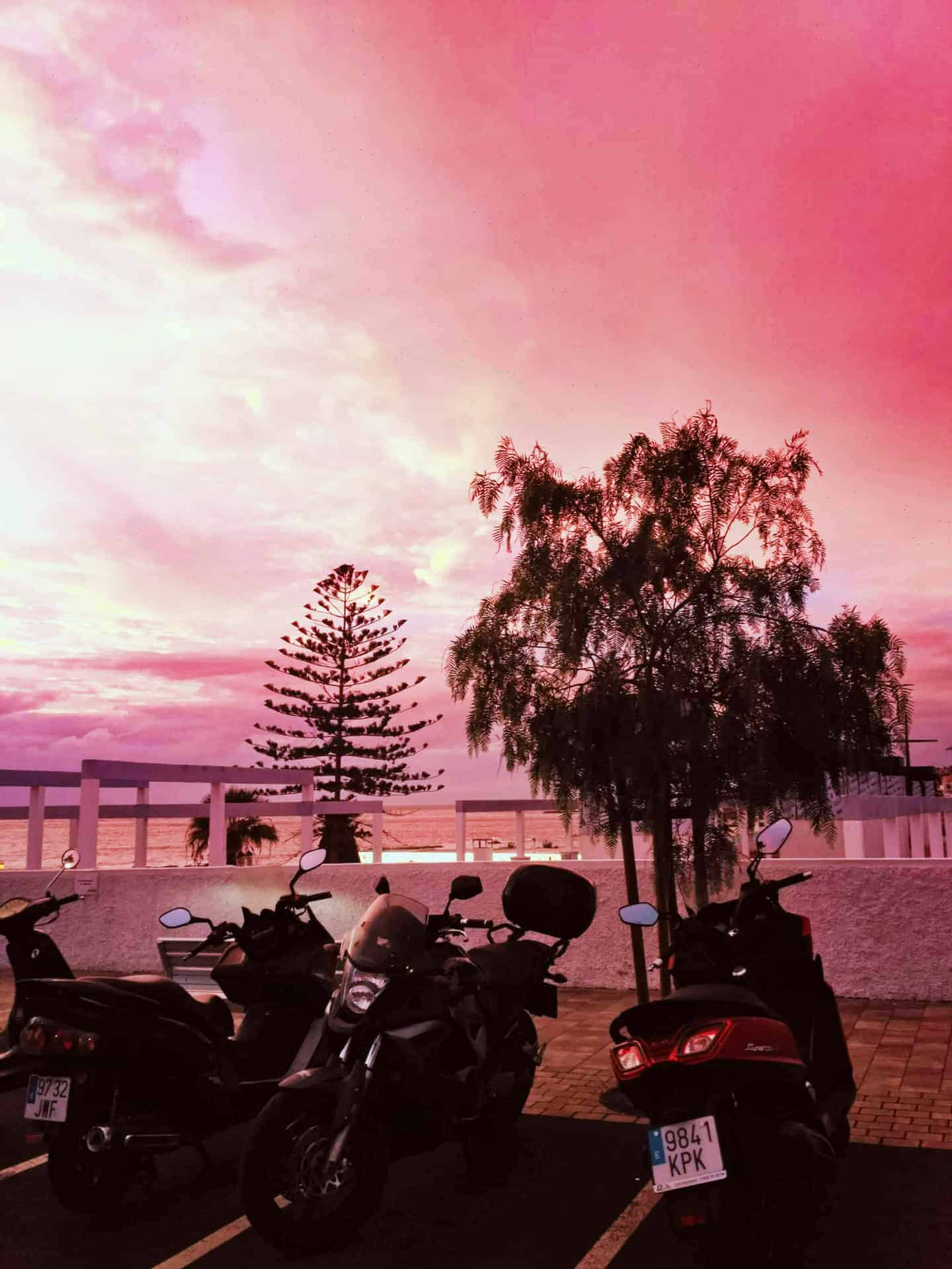 motorcycles pink sunset